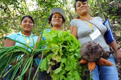 Participants at a Sustainable Harvest food security training in Peru